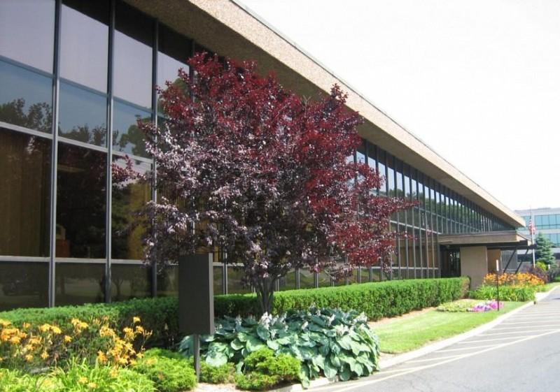 U.S. Executive Center - 560 Sylvan Ave, Englewood Cliffs