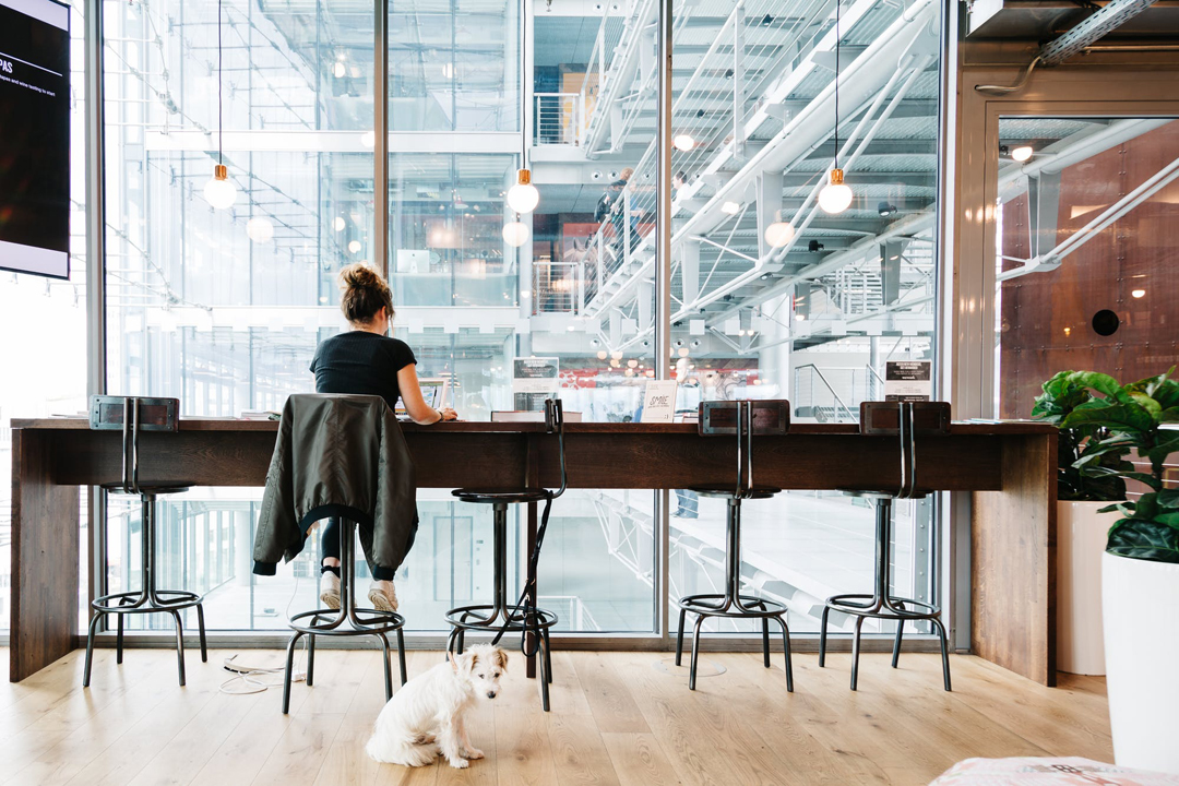 wework - Spacemob Claymore - 8 Claymore Hill #03-01 - Singapore