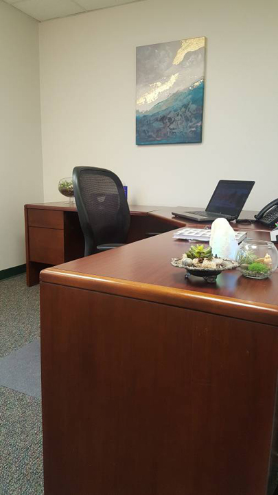 Office Space in Olive Blvd Suite
