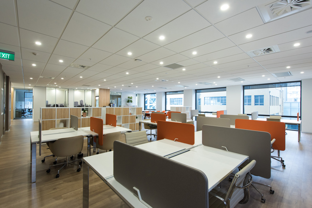 Office Space in Level 6 1 Willis Street