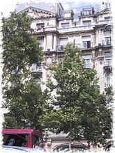Rue Jean Giraudoux- Paris